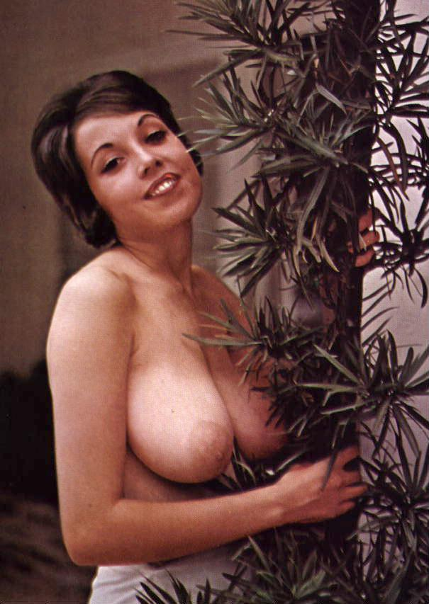 1960S Porno Julie Williams Wild Xxx Hardcore-7938